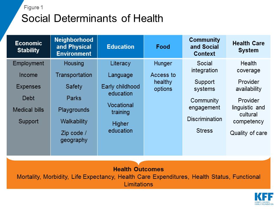 Figure 1 Social Determinants Of Health